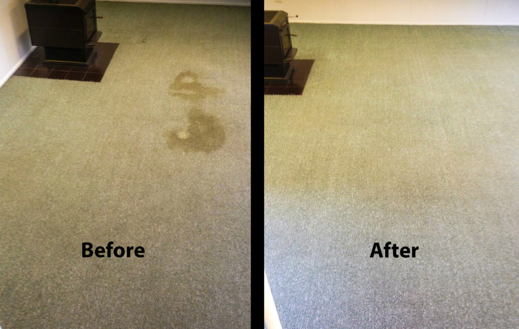 Before and after gallery of carpet cleaning and stain removal