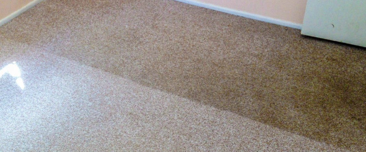 PROFESSIONAL CARPET CLEANING Caboolture